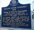 Image for Yellow Fever Epidemic 1878