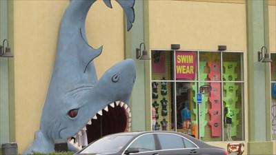 veritas vita visited Walk in through the Jaws