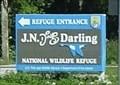 "Image for ""Ding"" Darling NWR, Sanibel Island, Florida, USA"