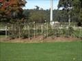 Image for Memorial Rose Gardens - Nowa Nowa, Vic, Australia