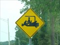 Image for Golf Cart Crossing - Fruit Cove, Florida