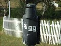 Image for Rigg ... a Ned impersonator - Bullio, NSW