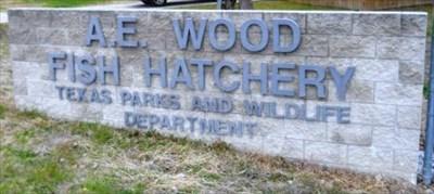 A E Wood Fish Hatchery - San Marcos, TX - Fish Hatcheries on