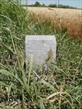 Image for June Elliott - Winfield, KS