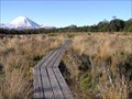 Image for Boardwalk on Silica Springs Track, Mt Ruapehu. North Is. New Zealand.