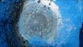 Image for W 311 - Benchmark Disk - Pompano Beach, Florida