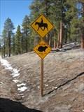 Image for Prairie Dog & Horseback Rider Crossing - Bryce Canyon National Park, UT