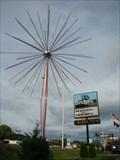 Image for Elizabethton Fireworks Tree - Elizabethton, Tennessee