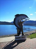 Image for Taming the Trout Photo Cutout - Te Anau, New Zealand