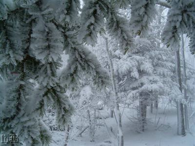 Snow on Stony Man Mountain