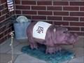 Image for Aggie Hippo - Hutto, TX