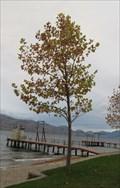 Image for Brad Lazar - Peachland, British Columbia