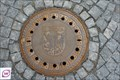 Image for Melnik manhole cover