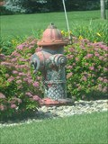 Image for Flowery Fire Hydrant – Rock Valley, IA