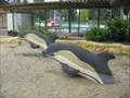 Image for Tidal Play - Davis, CA