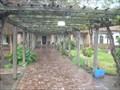 Image for San Luís Obispo de Tolosa Gardens - San Luis Obispo, California