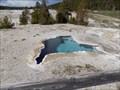 Image for Blue Star Spring - Yellowstone National Park, WY