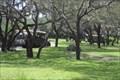 Image for Kilimanjaro Safaris - Disney's  Animal Kingdom, Orlando, FL.