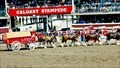Image for Stampede's centennial bash 'pride of Alberta'; attendance eclipses 1.4 million visitors