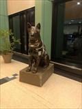 Image for K9 Dog - Chicago, IL