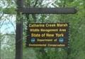 Image for Catharine Creek Marsh Wildlife Management Area  - Watkins Glen, NY