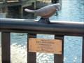 Image for Ed Lindgren, Lake Eola Park - Orlando, FL