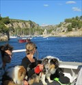Image for Visit of the Calanques by Boat - Cassis, France