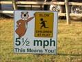 Image for Yogi Bear says 5 1/2 MPH!