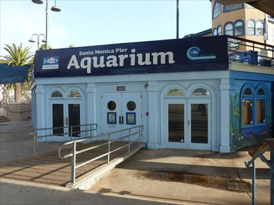 Santa Monica Pier Aquarium Santa Monica Ca Public Aquariums On