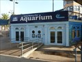 Image for Santa Monica Pier Aquarium  -  Santa Monica, CA