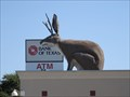 Image for The Jackalope - Fort Worth, TX