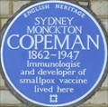 Image for Sydney Copeman - Redcliffe Gardens, London, UK