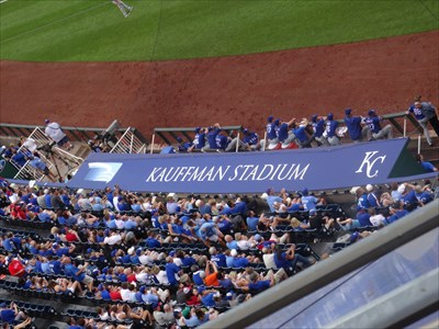 The Royals dugout