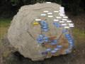 Image for History Tree - Exbury Gardens, Exbury, South Hampshire, UK