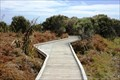 Image for Waituna Lagoon Boardwalk