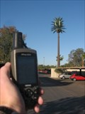 Image for Palm Tree Cell Tower near Priest and Broadway - Tempe, AZ