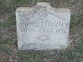 Image for James F. Ritchey - Perryman Cemetery, Forestburg, TX