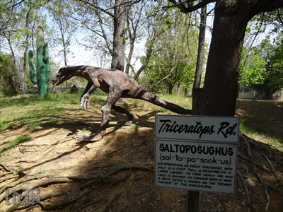The saltoposughus lives on Triceratops Rd. (Note the weird cactus in the background.)