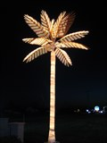 Image for Electric Palm Trees - The Penthouse Club
