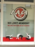 Image for No Limit Academy - Lahnstein, RLP