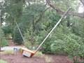 "Image for ""Fairway Wood"" in Pinehurst, NC"