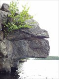 Image for Rock Triceratops - Bon Echo Provincial Park, ON