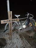 Image for Christopher Volpe Ghost Bike Memorial - Tempe, AZ