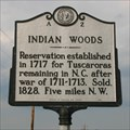 Image for Indian Woods, A-2