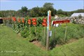 Image for Casey Farm Education Garden - Casey Farm - North Kingstown, RI