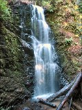 Image for Berry Creek Falls