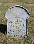Image for Charles E. Redmon - Mt. Carmel Cemetery - Wolfe City, TX