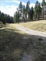 Image for Fir Trail - Lincoln National Forest - Cloudcroft, NM