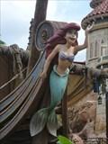 Image for Under the Sea  Mermaid - Lake Buena Vista, FL