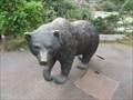 Image for Bear - San Francisco, CA
